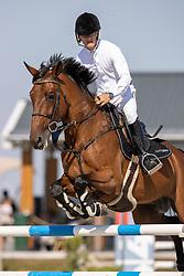 Ten Cate Eric, NED, Lacoste 145<br /> Nederlands Kampioenschap Springen<br /> De Peelbergen - Kronenberg 2020<br /> © Hippo Foto - Dirk Caremans<br />  06/08/2020