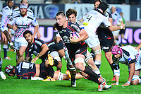Louis PICAMOLES - 24.04.2015 - Stade Francais / Stade Toulousain - 23eme journee de Top 14<br />
