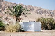 Israel, Judea Desert, Einot Zokim a blooming desert oasis on the shore of the Dead Sea A Sukkah built under a palm tree .