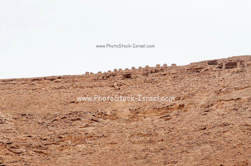 Prehistoric rock carving of an animal (Probably a camel) found at sites in the Uvda Valley, Negev, Israel. These sites have been dates to have been dated to the Bronze age 6th–3rd Millennia BCE