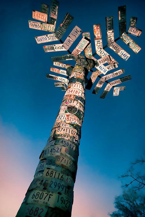 License Plate Palm Tree.James Connor, Nashville Indiana