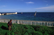Tipical dhow boat passes near the old pier in Ilha de Mozambique while a woman cuts the grass