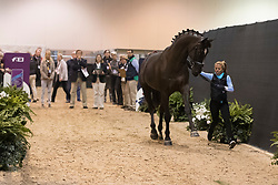 Florencia Manfredi Maria, ARG, Bandurria Kacero<br /> Horse Inspection<br /> FEI World Cup Dressage Final, Omaha 2017 <br /> © Hippo Foto - Jon Stroud<br /> 29/03/2017