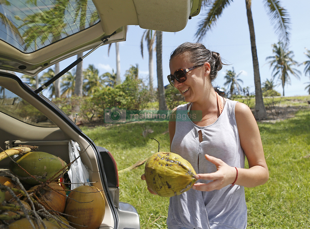 Maria Payor, a North Miami Beach resident, is collecting coconuts to share with her neighbors at Haulover Marina in the Hurricane Irma aftermath on Tuesday, September 12, 2017, in Miami Beach. Photo by David Santiago/El Nuevo Herald/TNS/ABACAPRESS.COM