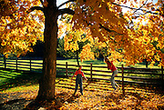 NJ, Morris County, girls playing in park