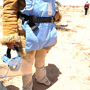 Landmines in Western Sahara