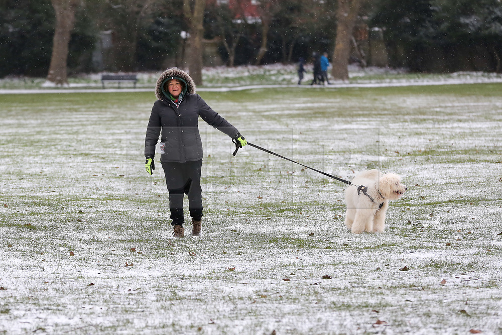 © Licensed to London News Pictures. 08/02/2021. London, UK. A woman and the dog brave the snow, freezings temperatures and strong winds in north London. The Met Office has issued yellow warnings for snow as cold air from Russia and Eastern Europe continues across the UK. Photo credit: Dinendra Haria/LNP