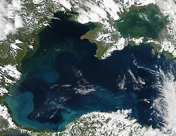 "Uncertainty swirls around how the Black Sea got its name. Some speculate that it stemmed from black sludge that covered objects in the sea's depths. Others say it was coined by sailors who observed that the water appeared black during winter storms. Perhaps the sea would have a different name if people had seen it from space in spring or summer, when the sea is transformed from drab to colorful.<br /> On May 7, 2016, the Moderate Resolution Imaging Spectroradiometer (MODIS) instruments on NASA's Aqua satellite acquired this natural-color image of the Black Sea, a large inland body of water bordered by Bulgaria, Romania, Ukraine, Russia, Georgia, and Turkey. Light blue colors toward the middle of the sea are likely the result of blooming phytoplankton.<br /> Phytoplankton are the ""primary producers"" of the seas and oceans. These plant-like, microscopic algae, bacteria, and protists use chlorophyll to make food from sunlight and dissolved nutrients. More than 150 different types of phytoplankton have been observed in the Black Sea, supporting a rich bounty of fish and other marine life.<br /> One type of phytoplankton found in the Black Sea are coccolithophores - microscopic plankton that are plated with white calcium carbonate. However, early May might be too soon to see them blooming here in large numbers, according to ocean scientist Norman Kuring of NASA's Goddard Space Flight Center. Their signature milky blue swirls are more common in summer. On the other hand, climate change is altering the timing of phytoplankton blooms around the world. Only a surface sample can confirm the exact composition of this bloom.<br /> Other factors could also contribute to the myriad colors. The middle of the sea is quite deep, diving down more than 2000 meters (7,000 feet). In this region, surface water generally does not mix with the deeper, saltier, anoxic waters. But in the shallows closer to the coasts, some color could be due to the mixing and stirring of bottom sediments. Browns and greens are also"