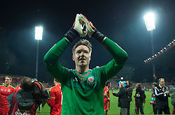 ZENICA, BOSNIA & HERZEGOVINA - Saturday, October 10, 2015:Wales goalkeeper Wayne Hennessey celebrates after securing a place at next years Euro Championships after the Bosnia & Herzegovina vs Wales match at the Stadion Bilino Polje during the UEFA Euro 2016 qualifying Group B match. (Pic by Peter Powell/Propaganda)