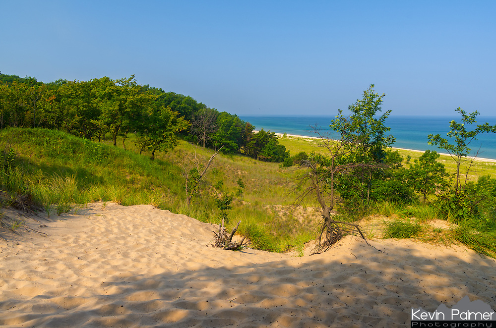 After hiking several miles past Cowles Bog and through the woods I came upon this view. 100 feet below the sand dune was this Lake Michigan beach. It wasn't very big since it was located right in between a private subdivision and a power plant.