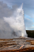 The Old Faithful geyser erupts in Yellowstone National Park, Wyoming. When Old Faithful erupts, it can launch as much as 8,400 gallons (32,000 liters) of boiling water as high as 185 feet (56 meters), although the average eruption height is 145 feet (44 meters). The time between eruptions is growing longer on average, possibly because earthquakes have affected underground water levels. The current interval is either 65 or 91 minutes depending on attributes of the prior eruption.