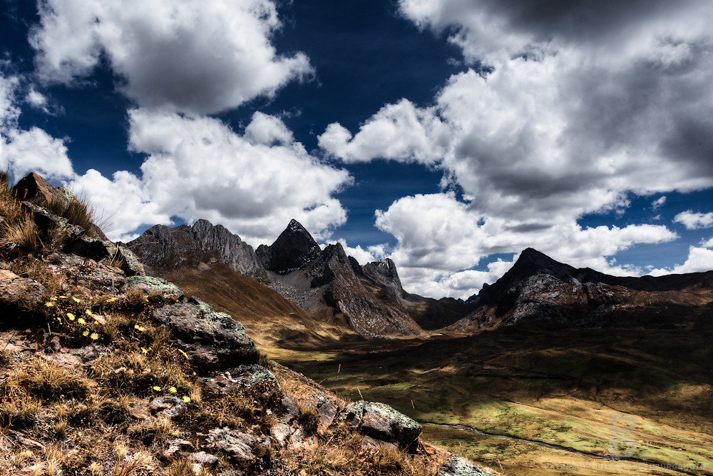 Peaks and valleys in a dramatic landscape with dark blue sky and puffy clouds in the background and rocks and daisies in the foreground. Cordillera Huayhuash in the Andes Mountains of Peru.