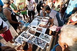 Gallipoli - mercato del pesce