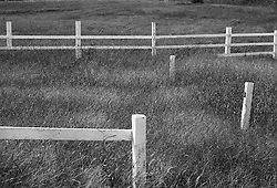 White corral fence in grass meadow