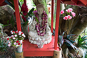 """Fresh flower leis on shrine statue at 1968 Byodo-In Temple, Valley of Temples Memorial Park, Oahu, Hawaii, USA. The peaceful Byodo-In Temple is in Valley of the Temples Memorial Park, at 47-200 Kahekili Highway, Kaneohe, on the island of Oahu. The Byodo-In Temple (""""Temple of Equality"""") was built in 1968 to commemorate the 100 year anniversary of the first Japanese immigrants to Hawaii. This Hawaii State Landmark is a non-practicing Buddhist temple which welcomes people of all faiths. The beautiful grounds at the foot of the Ko'olau Mountains include a large reflecting pond stocked with Japanese koi carp, meditation niches, and small waterfalls. Byodo-In Temple in O'ahu is a half-scale replica of the original Byodo-in Temple built in 1053 in Uji, Japan (a UNESCO World Heritage Site)."""