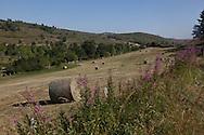 landscape of aubrac, france  /  paysage de l aubrac, France
