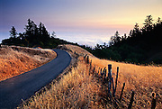 Smokey summer evening along a Northern California country road in Sonoma County. The smoke was from a forest fire in Oregon's Klamath region.