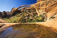 Lanscape Arch and reflection, Arches National Park, Utah