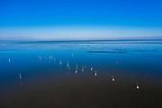 Nederland, Flevoland, Trintelhaven; 22-02-2021; zicht op het IJsselmeer, richting Friese kust. Bevroren water en boeien (palen) voor netten. View of the IJsselmeer, towards the Frisian coast. Frozen breakwater and buoys (posts) for nets.<br /> <br /> drone-opname (luchtopname, toeslag op standaard tarieven);<br /> drone recording (aerial, additional fee required);<br /> copyright foto/photo Siebe Swart