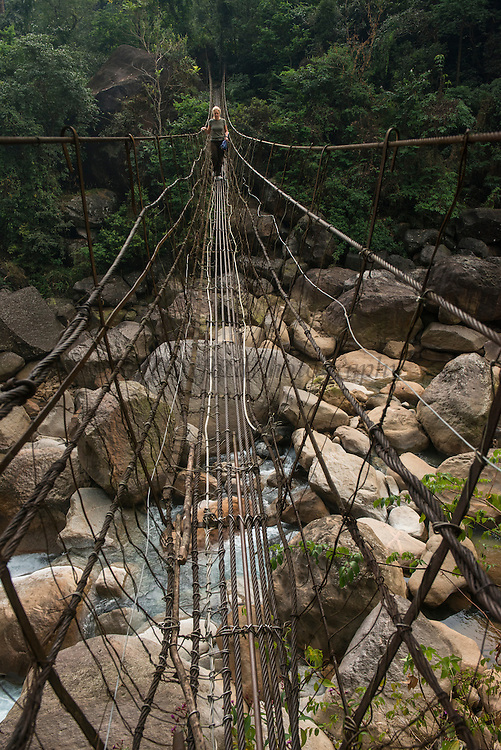 Living bridge or Root bridge (Ficus elastica)  Renee<br /> Khasi Tribe<br /> Nongriat, Khasi Hills<br /> Meghalaya, ne India<br /> Range: South China, NE India, Burma