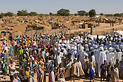 At the end of the month of Ramadan, the Muslim fasting period, some of the families in the Breidjing Refugee Camp celebrated the festival of Eid al-Fitr by going to services at an improvised mosque; afterward, the imam led a procession around the camp, singing songs and delivering periodic homilies (shown here). Hungry Planet: What the World Eats (p. 63).