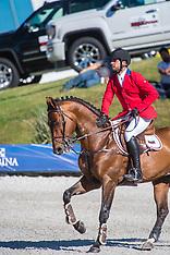 FBI Seizes Olympic Show Jumper's Horses - 20 Nov 2018