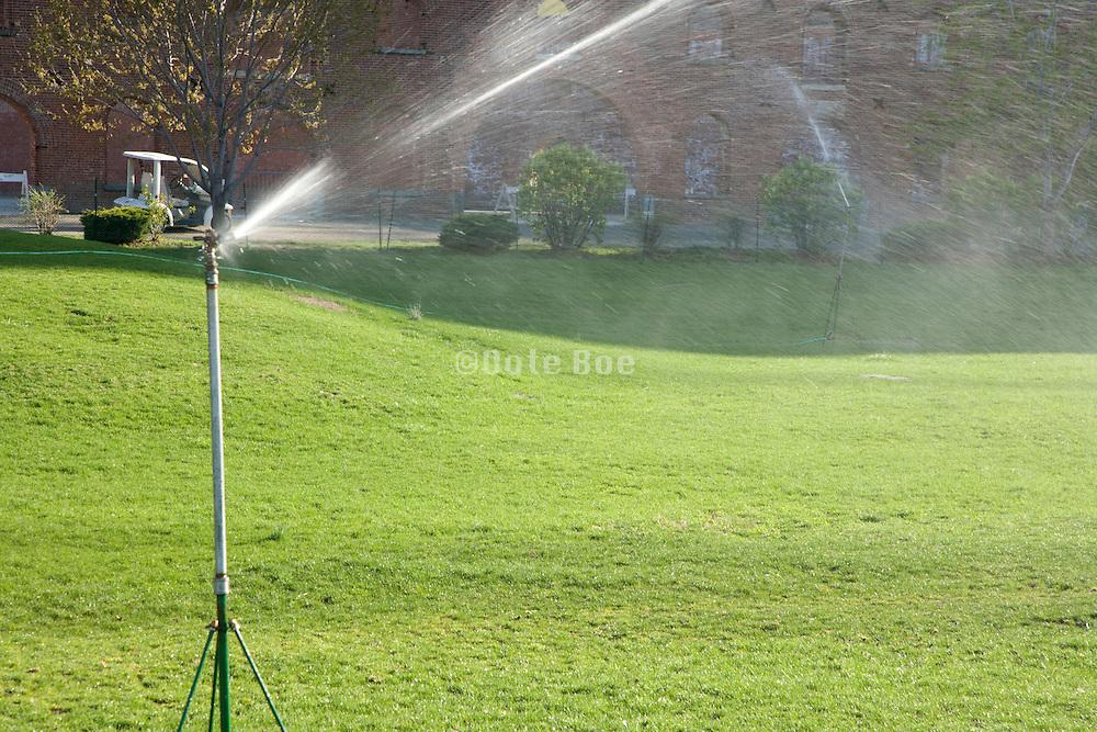 sprinkling the grass