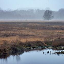 """""""Paisagem Natural (Paisagem) fotografado na Alemanha, na Unição Européia - Europa. Registro feito em 2016.<br /> ⠀<br /> <br /> ENGLISH: Natural landscape photographed in Germany, in European Union - Europe. Picture made in 2016."""""""