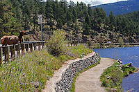 Evergreen Lake (Evergreen, Colorado)