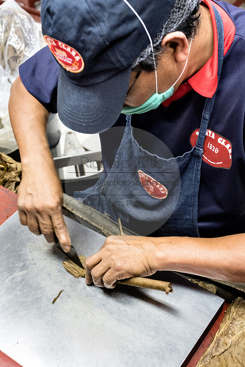 A master cigarmaker called a torcedor hand rolls a fine cigar at the Santa Clara cigar factory in San Andres Tuxtlas, Veracruz, Mexico. The factory follows traditional hand rolling using the same process since 1967 and is considered by aficionados as some of the finest cigars in the world.