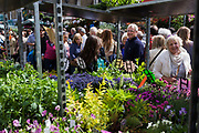 Seen through the trolleys used to transport shrubs and flowers, we see crowds walk past fresh plants in Columbia Road flower market, in north London. An assortment of plants and flowers are on display to shoppers, producing stunning colour and fragrances to lure city gardeners and homeowners to this well-known market on a Saturday morning. Sellers shout out their current bargains and shops sell everything from hats and couture to antiques and cakes.