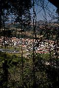 Pocos de Caldas_MG, Brasil...Plano de manejo das Reserva Particular do Patrimonio Natural (RPPN) em Pocos de Caldas, Minas Gerais...The Private Reserve of Natural Heritage (RPPN) in Pocos de Caldas, Minas Gerais...Foto: JOAO MARCOS ROSA / NITRO
