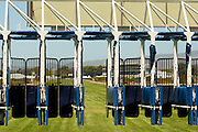 Start gate at the L'Ormarins Queens Plate, Kenilworth race course, Cape Town. Image by Greg Beadle