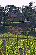 A view over the vineyard and the chateau that sits on a cliff  Chateau de Pressac St Etienne de Lisse  Saint Emilion  Bordeaux Gironde Aquitaine France