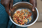 Edith Saysay, 35, holds a bowl with dried peppers as she cooks at home in the village of Jenneh, Bomi county, Liberia on Tuesday April 3, 2012. As part of a UNICEF sponsored social cash transfer programme, Edith and her family receive 2650 Liberian dollars (approx. 36 USD) per month. The money has allowed her to buy cassava from which she makes fufu that she then sells for profit. She also uses some of the money to send all of her seven children to school. Before joining the programme, only 3  of her children attended school.