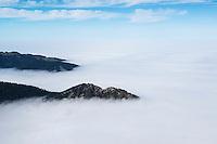 Mountains emerge above inversion layer fog, from summit of Breitenberg, Allgäu, Bavaria, Germany
