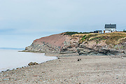 Joggins Fossil Cliffs palaeontological site, Unesco world heritage sight, Nova Scotia, Canada, USA