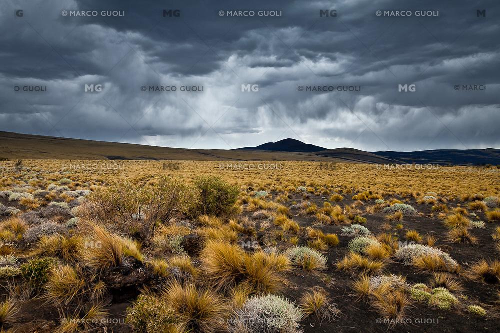 TORMENTA, ESTEPA  DE COIRONES (Festuca gracillima - fam. poaceas) Y CONOS VOLCANICOS, RESERVA PROVINCIAL LA PAYUNIA (PAYUN, PAYEN), MALARGUE, PROVINCIA DE MENDOZA, ARGENTINA (PHOTO © MARCO GUOLI - ALL RIGHTS RESERVED)