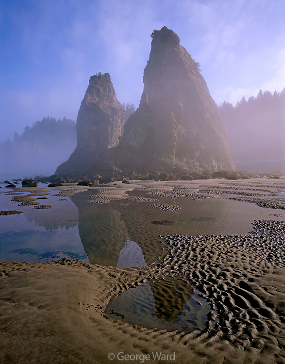 Morning Mist and Low Tidenear Hole-in-the-Wall,Olympic National Park, Washington