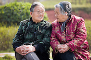 Old people join others in the community for morning chat in the park by the City Wall, Xian, China