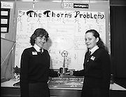 11/01/1985.01/11/1985.11th January 1985.The Aer Lingus Young Scientist Exhibition at the RDS Dublin ..Marina O'Flaherty (left) and Ursula Duffy, both from Ursuline Convent, Finisklin, Co. Sligo, were winners of one of the E.E.C prizes for their project 'A Biological Study of Holly Bushes'.