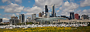 Spring wildflowers in a Panorama of Chicago's skyline from Northerly Island