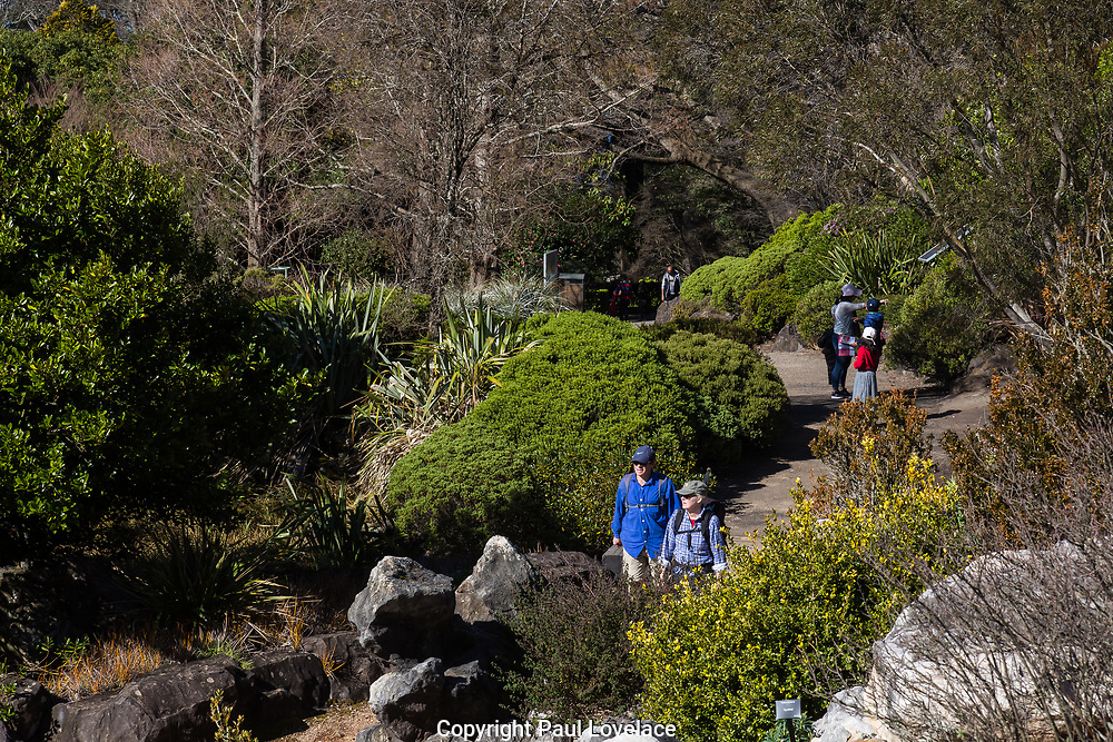 The Blue Mountains Botanic Garden, originally known as Mount Tomah Botanical Garden, is a 28-hectare public botanic garden located approximately 100 kilometres west of the Sydney central business district, The Blue Mountains, New South Wales, Australia.