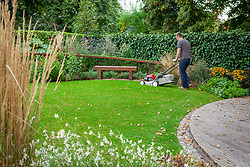 Mowing a lawn in autumn with a petrol lawnmower