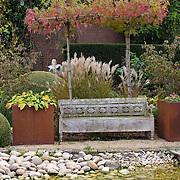 Modern Garden 1023