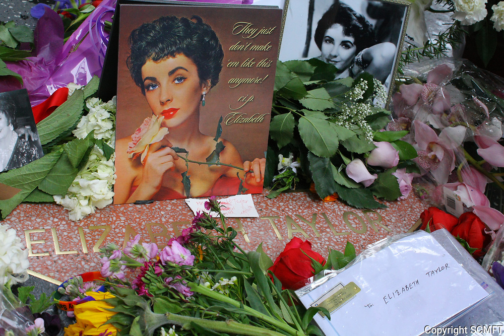 3/23/2011 The day Elizabeth Taylor died, flowers and cards placed at her Hollywood Walk of Fame star