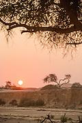 Sun setting, The Kaokoveld Desert, Kaokoland, Northern Namibia, Southern Africa