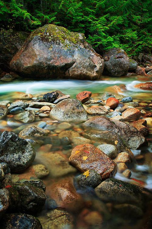 Rocks along the Skagit River in Washington state