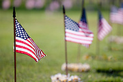 American flags and lei adorn the graves of soldiers at the Punchbowl National Cemetery of the Pacific in Honolulu, Hawaii on Memorial Day.