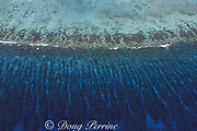 barrier reef, showing spur and groove formations, Lighthouse Reef Atoll, Belize, Central America ( Caribbean Sea ))